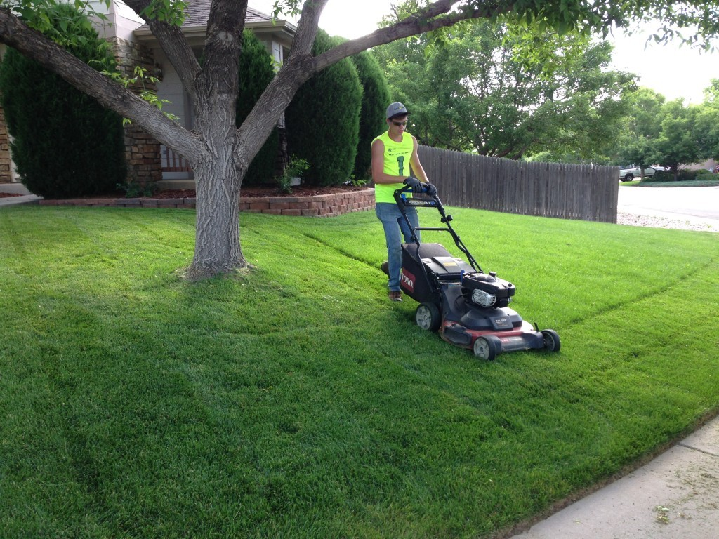 Lawn Service-Garland TX Landscape Designs & Outdoor Living Areas-We offer Landscape Design, Outdoor Patios & Pergolas, Outdoor Living Spaces, Stonescapes, Residential & Commercial Landscaping, Irrigation Installation & Repairs, Drainage Systems, Landscape Lighting, Outdoor Living Spaces, Tree Service, Lawn Service, and more.